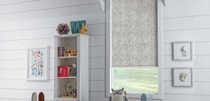 Window with roller shades in child's room